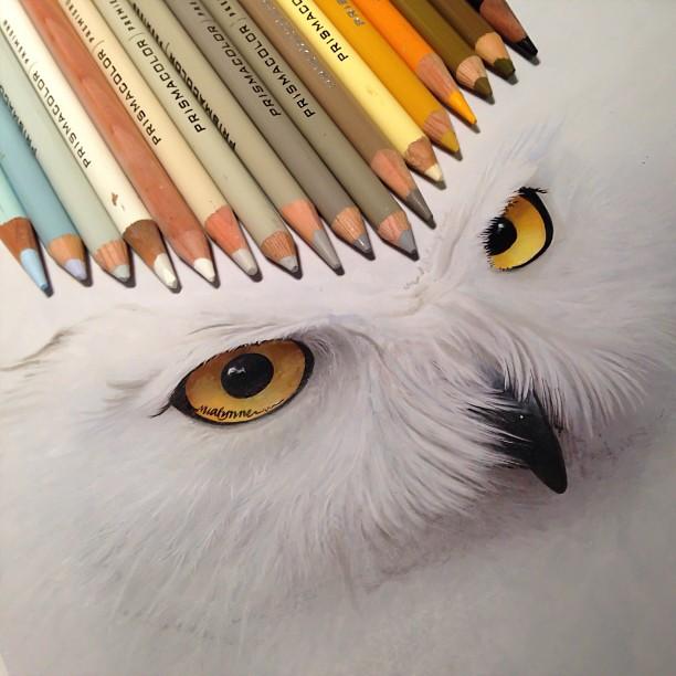 Hyperrealistic Animal Illustrations by Karla Mialynne