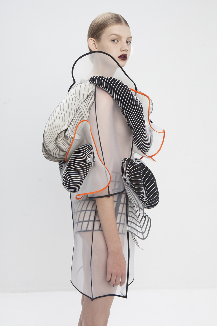 Hard Copy 3D Printed Dresses by Noa Raviv