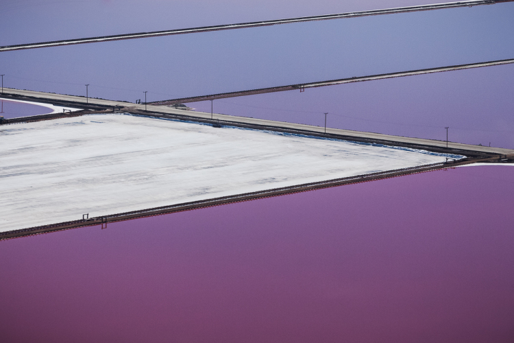 Purple Salt Flat Photos by Julieanne Kost