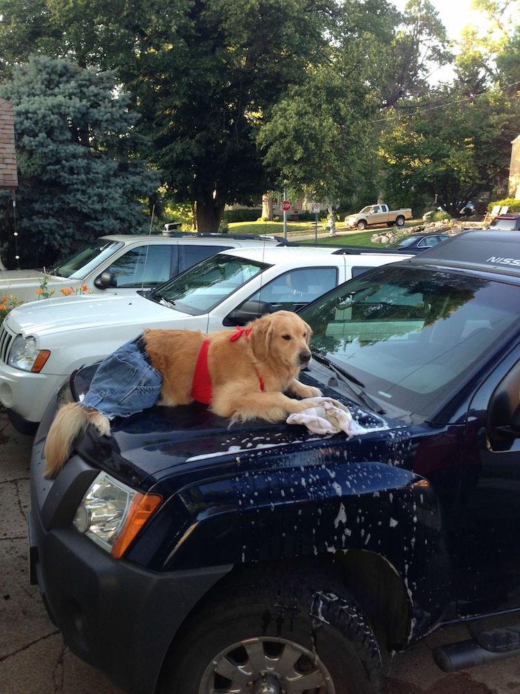 Bailey Washing Car