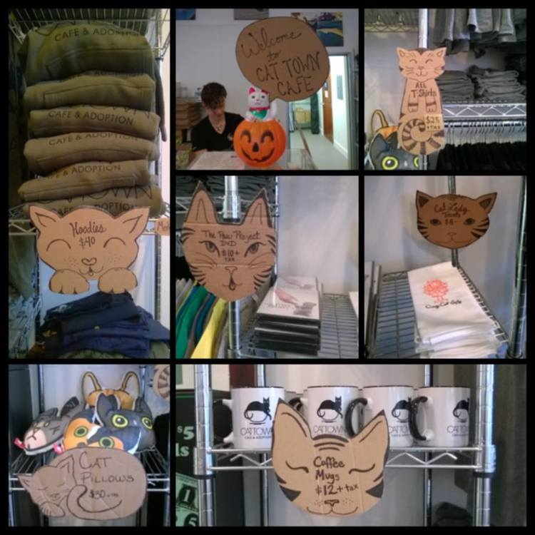 Cat Cafe Supplies