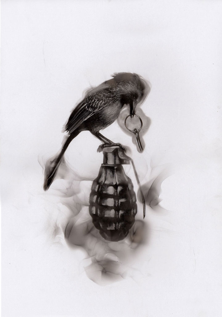 'Ornithocide', Haunting Bird Illustrations Created With Candle Soot