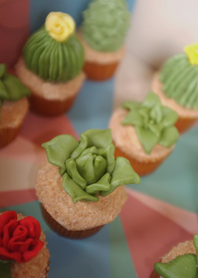 Cactus and Succulent Cupcakes by Alana Jones-Mann