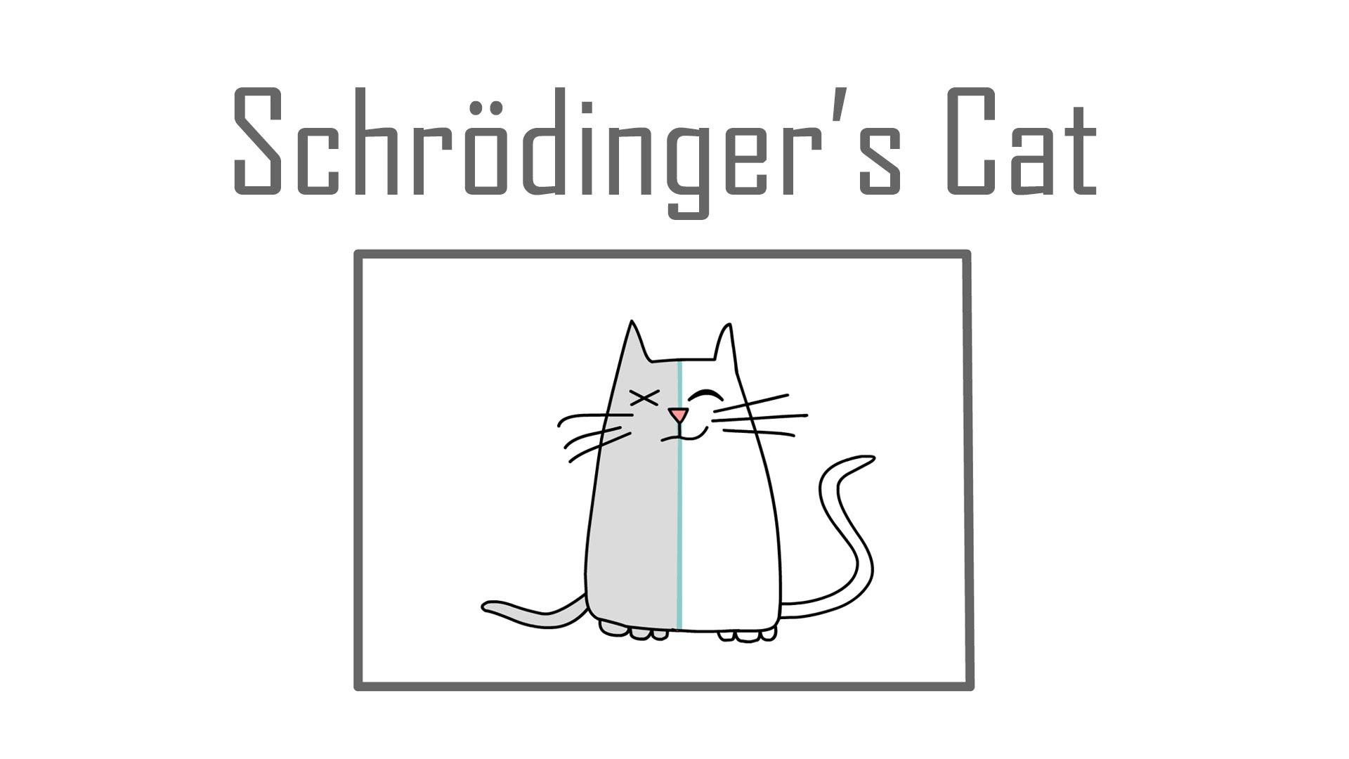 Jokes Schrodinger S Cat