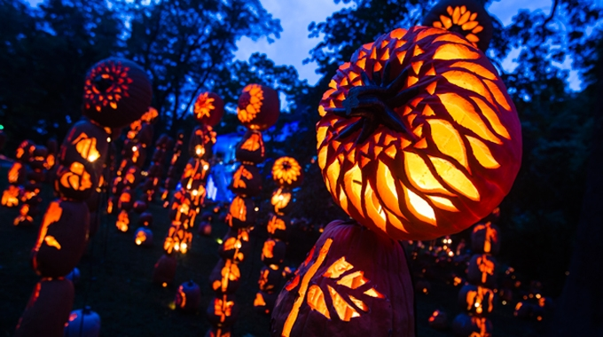 The 2014 Great Jack O'Lantern Blaze