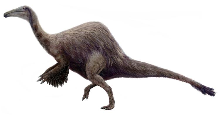 Deinocheirus mirificus cover