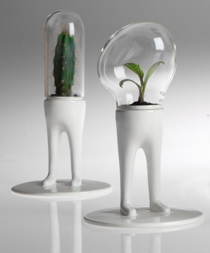 Domsai Terrariums by Matteo Cibic