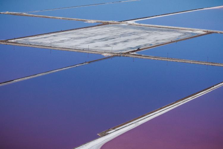 Purple Salt Flat Photos by Julieanne Kost