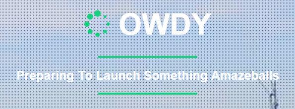 owdy logo