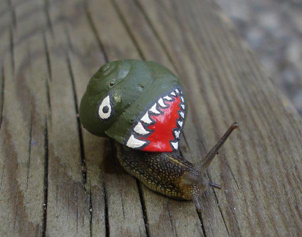 Painting Snail Shells