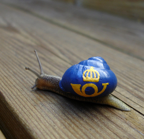 Painting Snail Shells