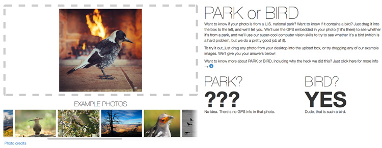 Park or Bird App by Flickr