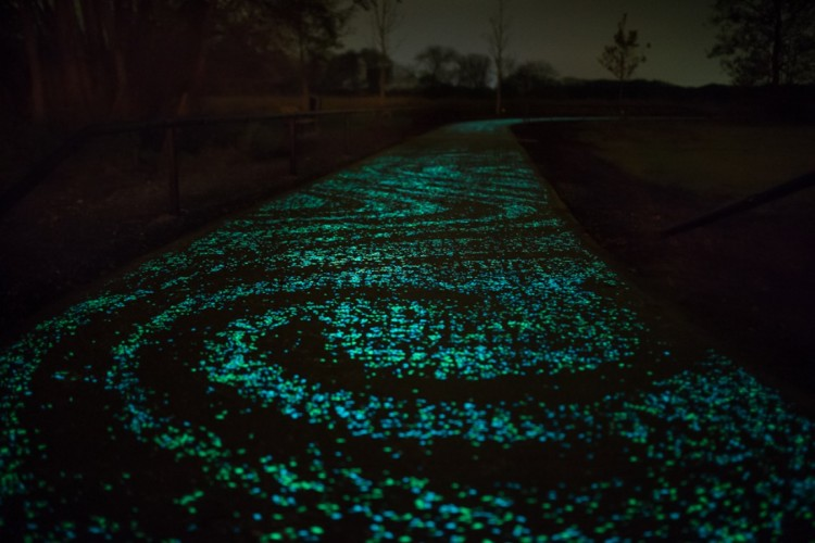 Van Gogh Starry Night Glowing Bicycle Path