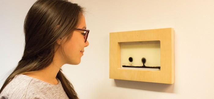 Eye Catcher Interactive Installation