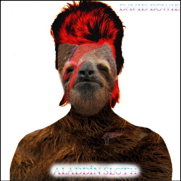 Aladdin Sloth