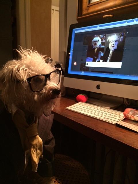 Radio Host Ira Glass Dressed As a Dog Dressed As Ira Glass