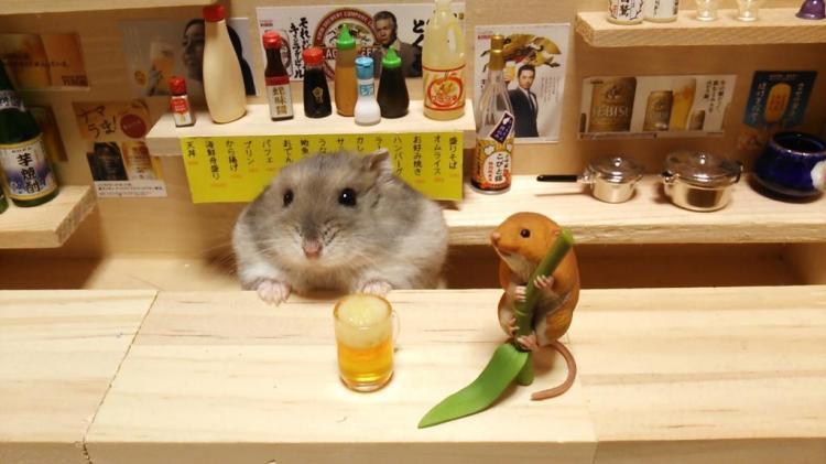 Beer at Sushi Bar