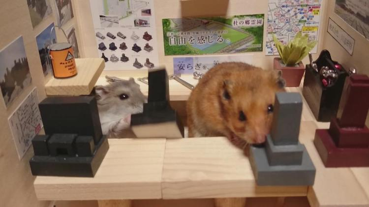 Hamsters Selling Tombstones