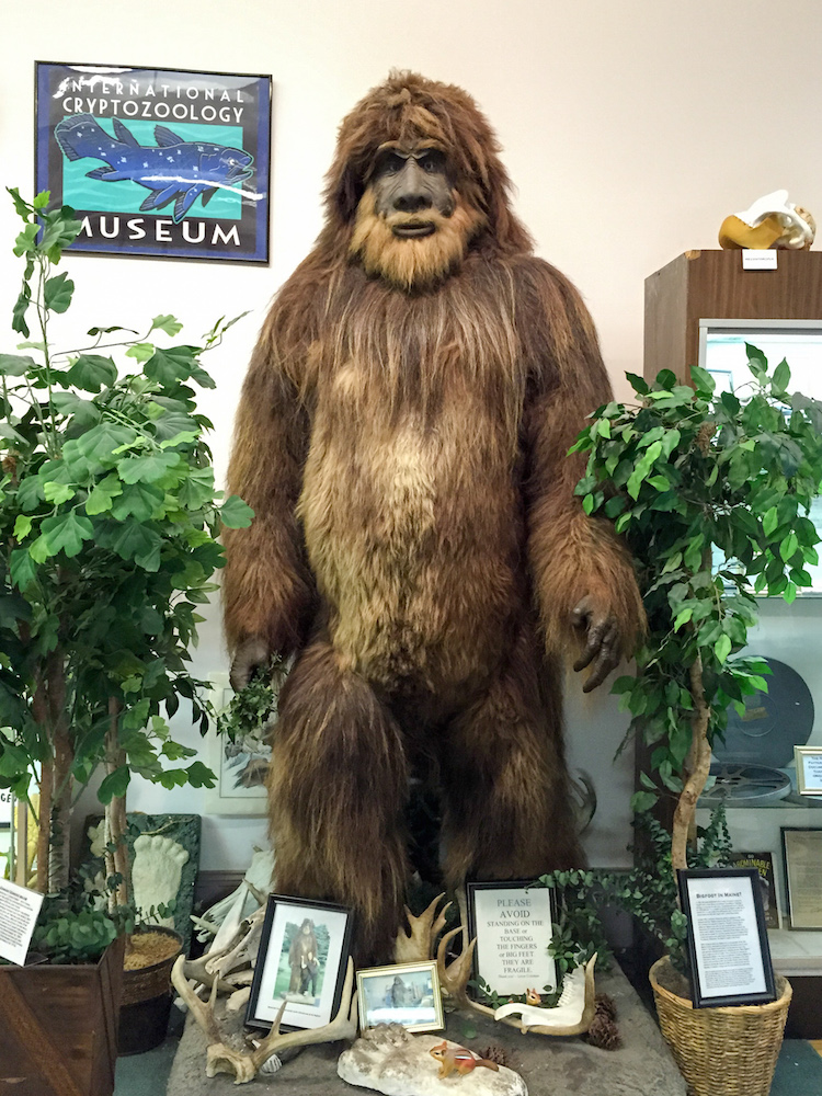 International Cryptozoology Museum, A Fascinating Collection of Mysterious Creatures in Portland, ME