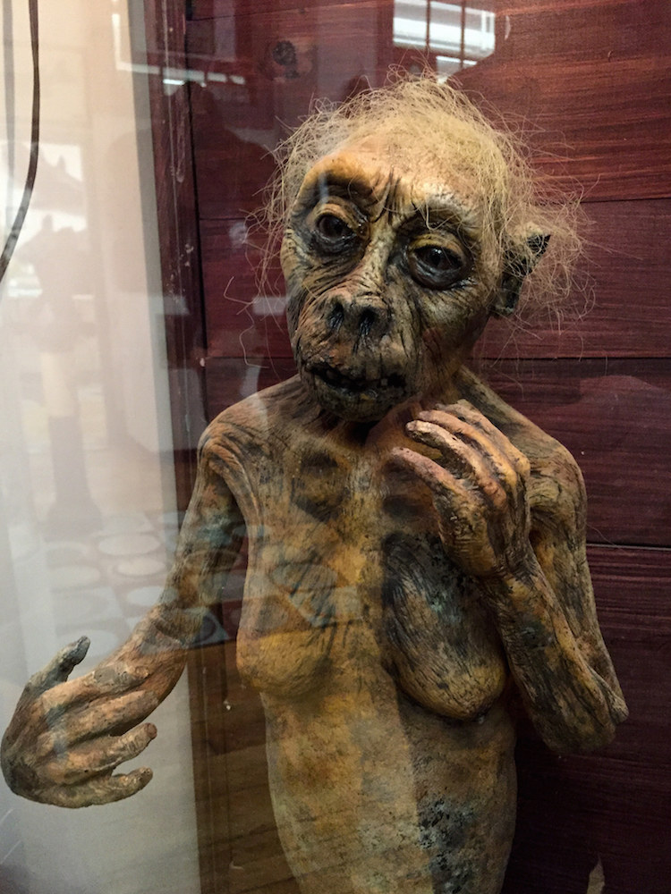 International Cryptozoology Museum4