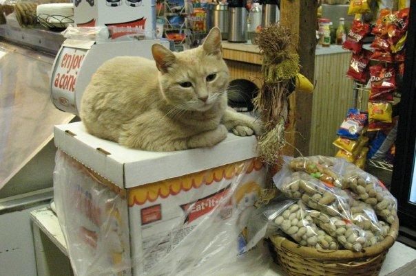 Mayor Stubbs at Snack Store