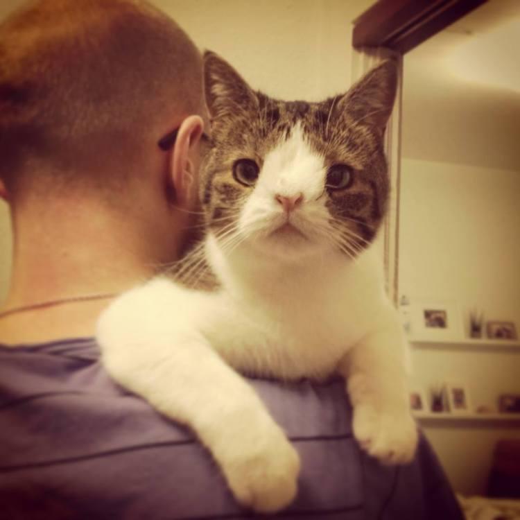 Monty on Daddy's Shoulder