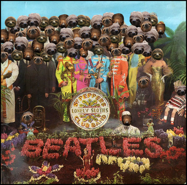Sgt. Pepper's Lonely Sloths Club Band