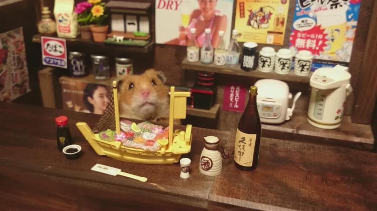 Sushi Boat and Saki