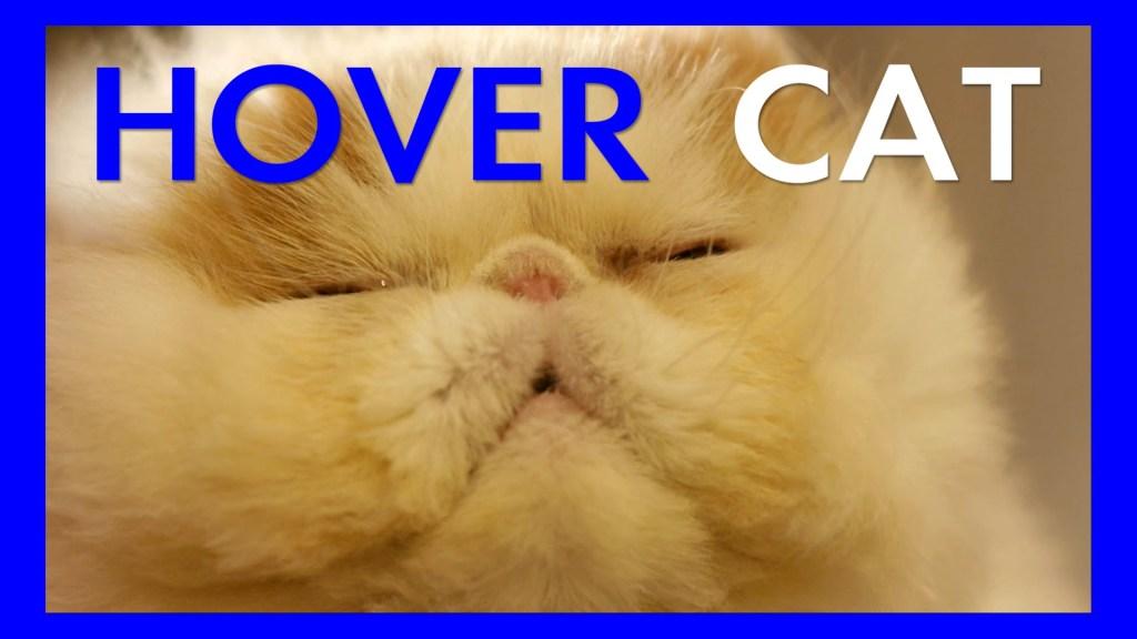 Cat Prepares to Hover Over Living Room In Literal Interpretation of 'Hover Cat' Meme