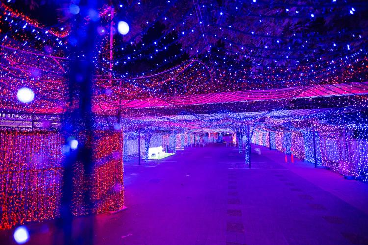 World Record Christmas Light Display in Australia