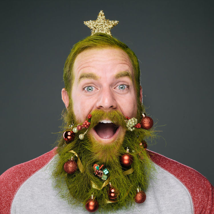 The Twelve Beards of Christmas by Stephanie Jarstad