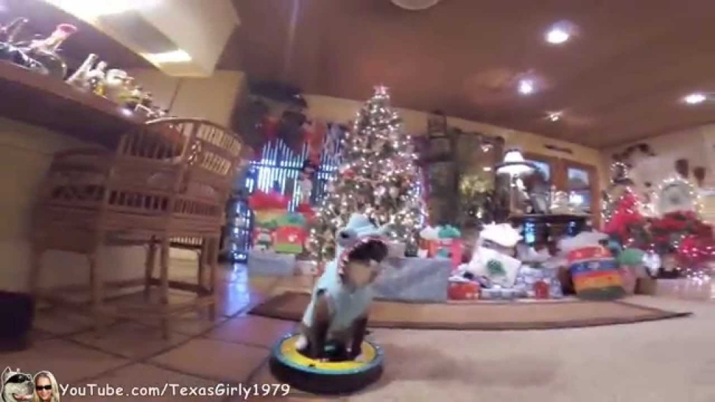 Cat in a Shark Costume Rides Around on a Roomba at His Grandma's House on Christmas Before the Presents Are Opened