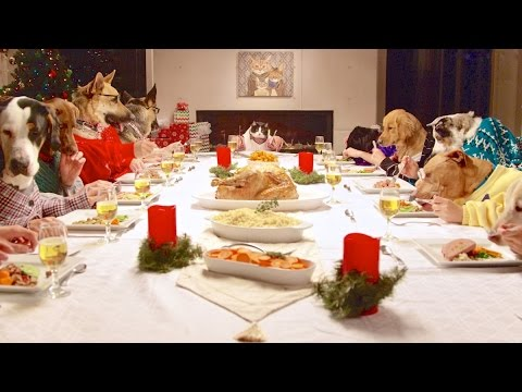 Cat With a Human Body Presides Over a Table Full of Ill-Mannered Canine Relatives During a Holiday Meal