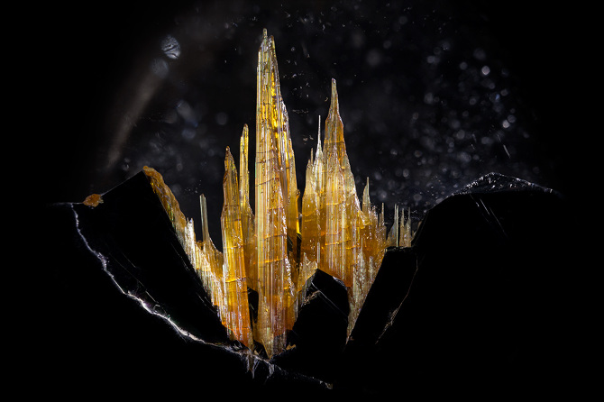 Photomicrographs of the Beautiful and Bizarre Forms of Gemstones