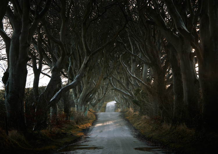 Roads by Andy Lee