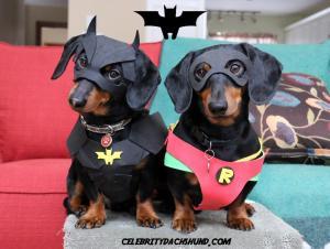 Crusoe and Oakley