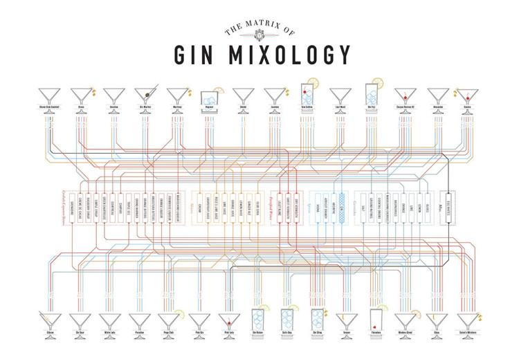 Gin Mixology Matrix