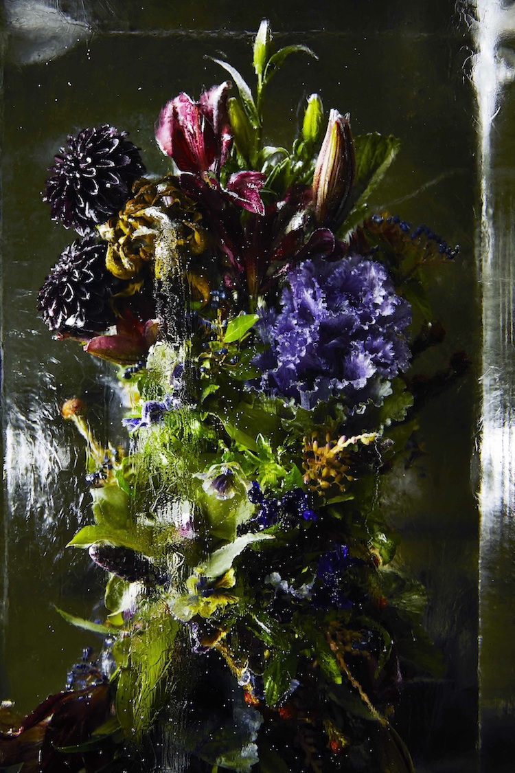 Iced Flowers Artist Makoto Azuma Encases Bouquets Of Flowers In