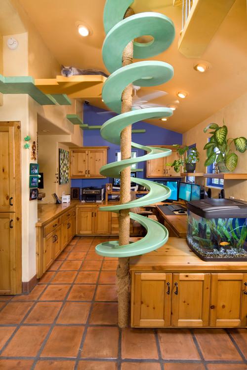Indoor Cat Playland
