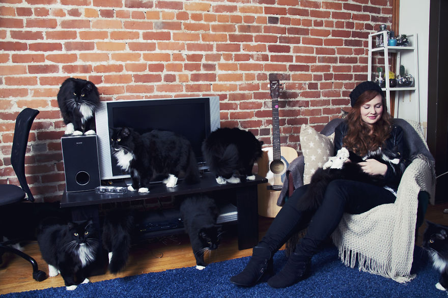 'Crazy Cat Lovers', An Amusing Photo Series That Places People in a Room With Multiple Replications of Their Cats