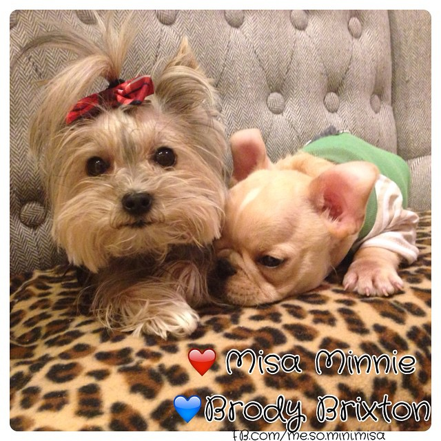 Misa and Brody