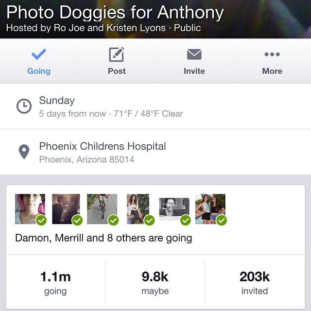 Photo Doggies for Anthony