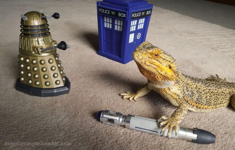 Pringle as Doctor Who