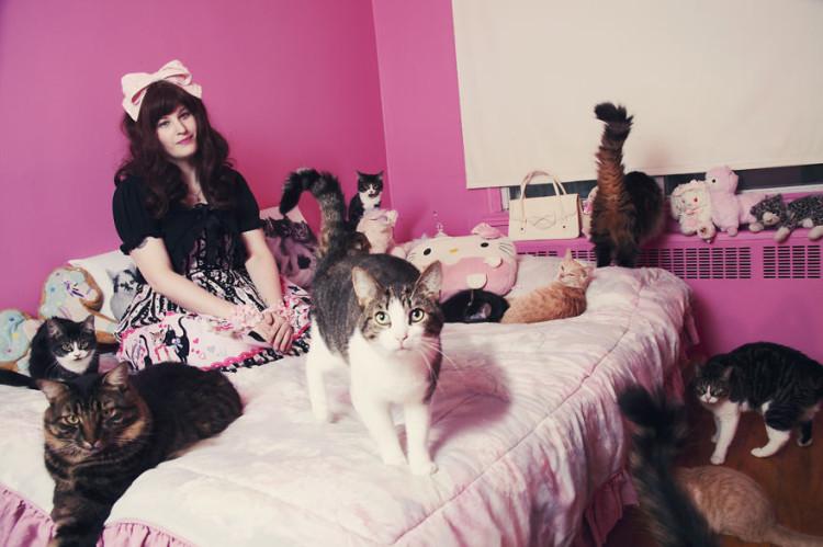 Sabrina and 6 Cats