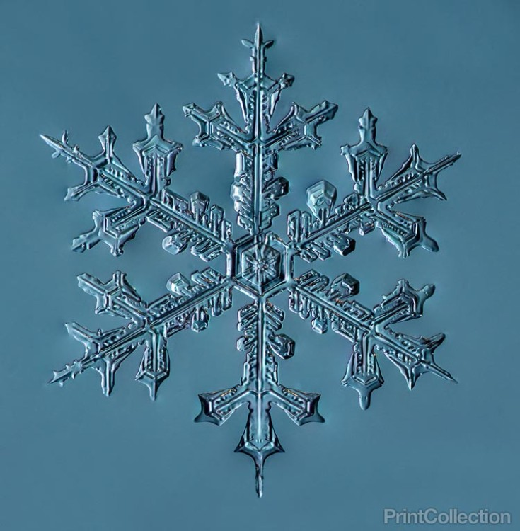 How To Make Real Snowflakes At Home