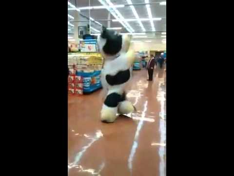 Enthusiastic Cow Mascot Dances Wildly to Music Inside a Grocery Store