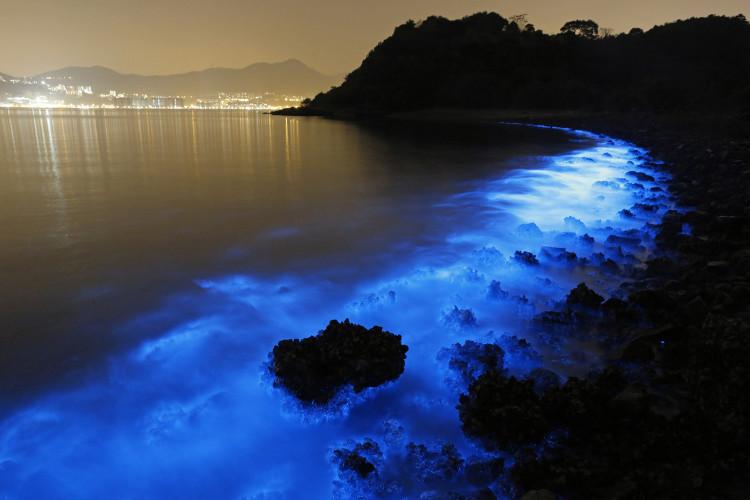 Bioluminescent Plankton Illuminates the Waters Off Hong Kong