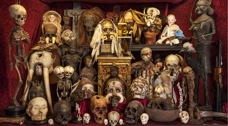 The Viktor Wynd Museum of Curiosities