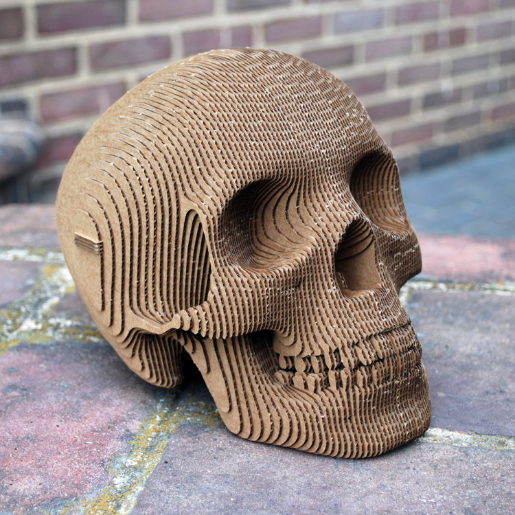 A Build Your Own Human Skull Sculpture Made Of Laser Cut Cardboard