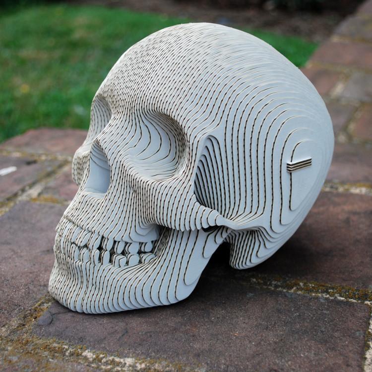 Vince Human Skull by Cardboard Safari